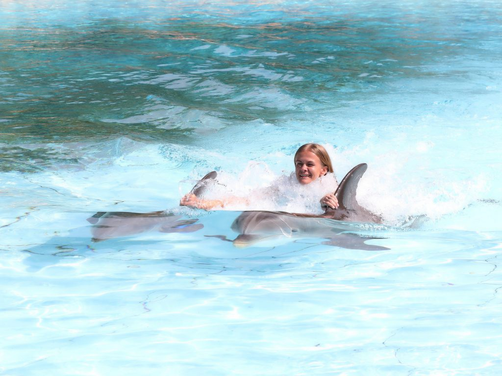 Things to do in Algarve Portugal - Visit Zoomarine and swim with dolphins Algarve