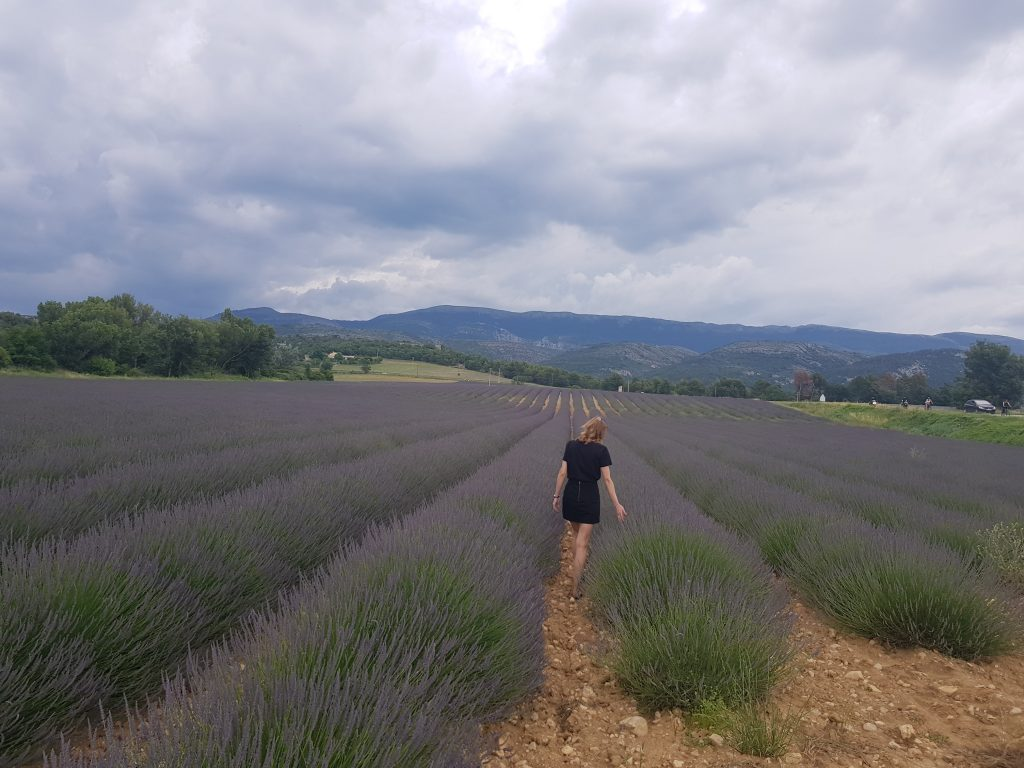Travel Bucket List Ideas - Smell lavender in Provence France