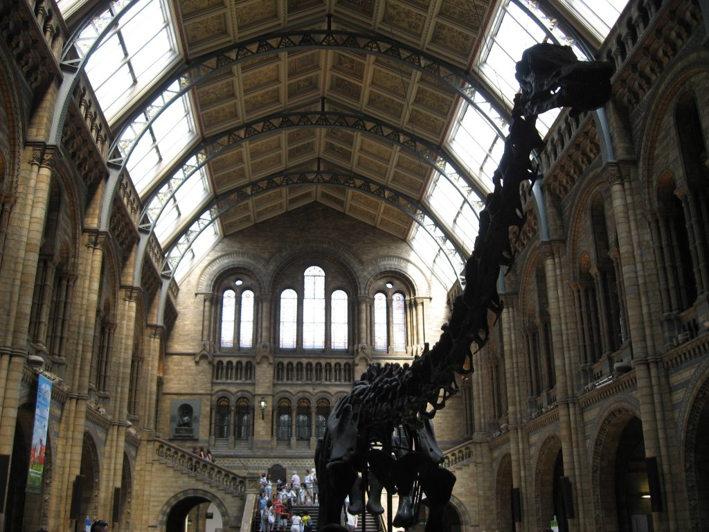 Bucket List Ideas UK - Natural Museum - things to do in the UK