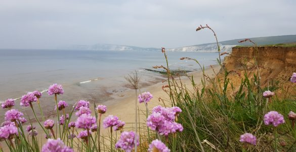 Isle of Wight things to do – TOP attractions on the Isle of Wight