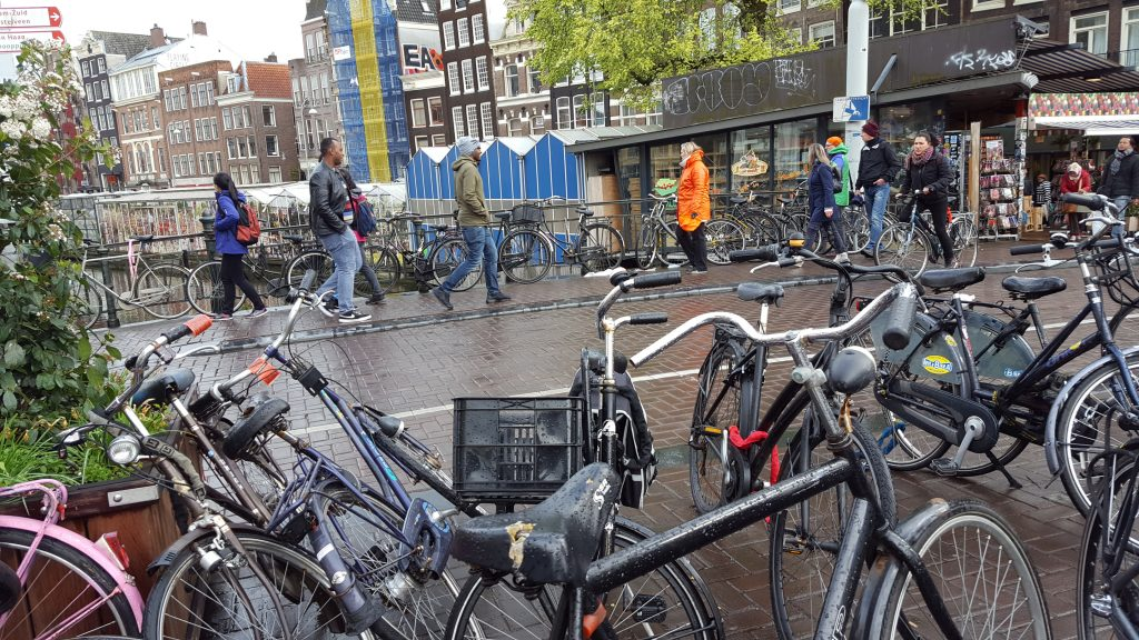 Things to do in Amsterdam - Bloemenmarkt