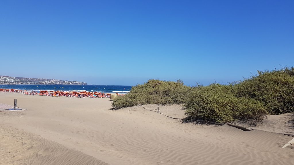 Best beaches in Gran Canaria - Playa Ingles