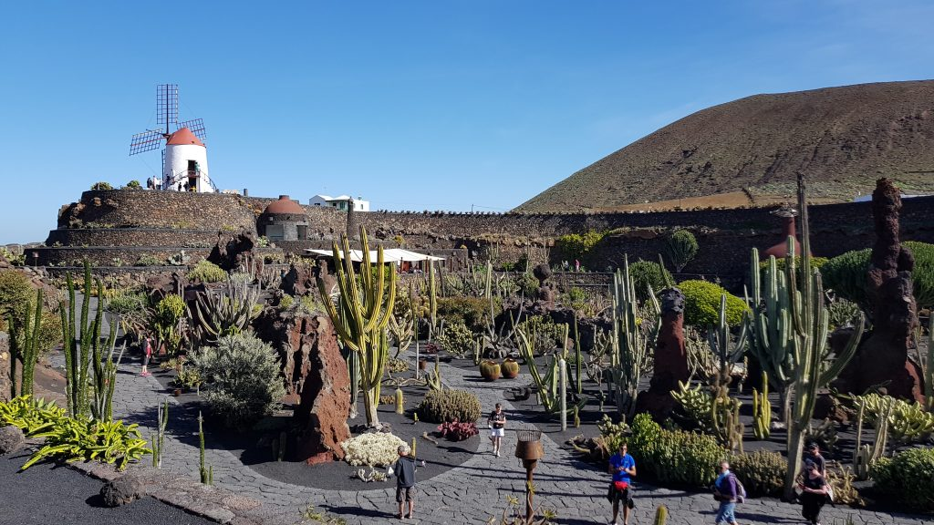 Where is Cactus Garden in Lanzarote