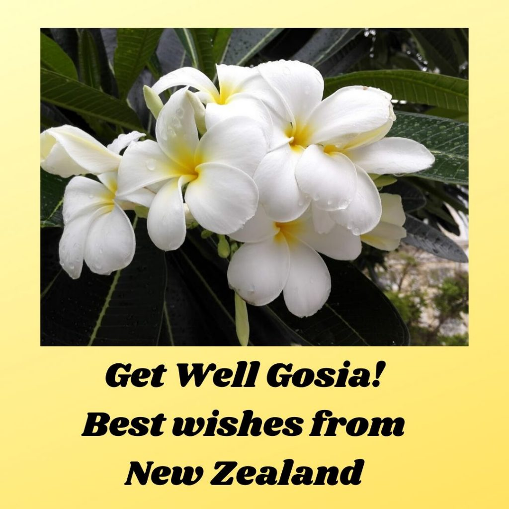 Get Well Gosia! Best wishes from New Zealand