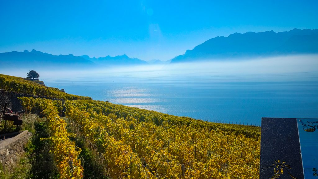 UNESCO sites in Europe - Lavaux, Vineyard Terraces, Switzerland