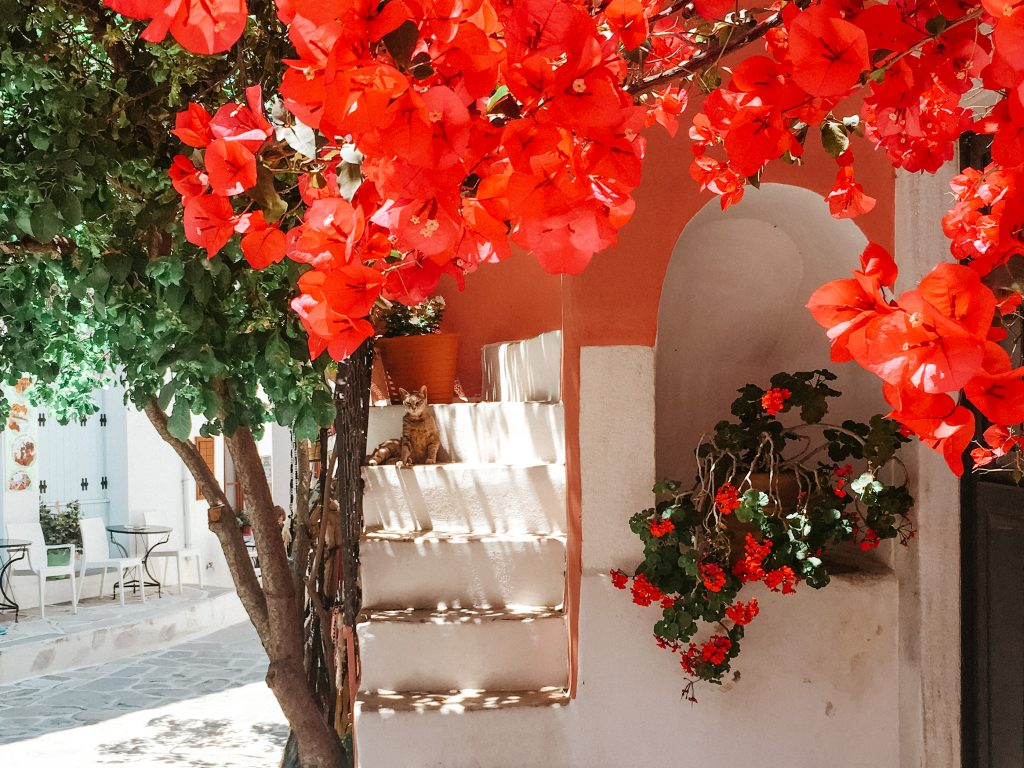 Most beautiful villages in Europe - Chalki, Greece (Naxos)