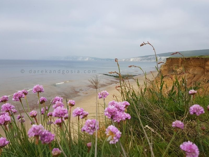 Places to visit near London - Isle of Wight