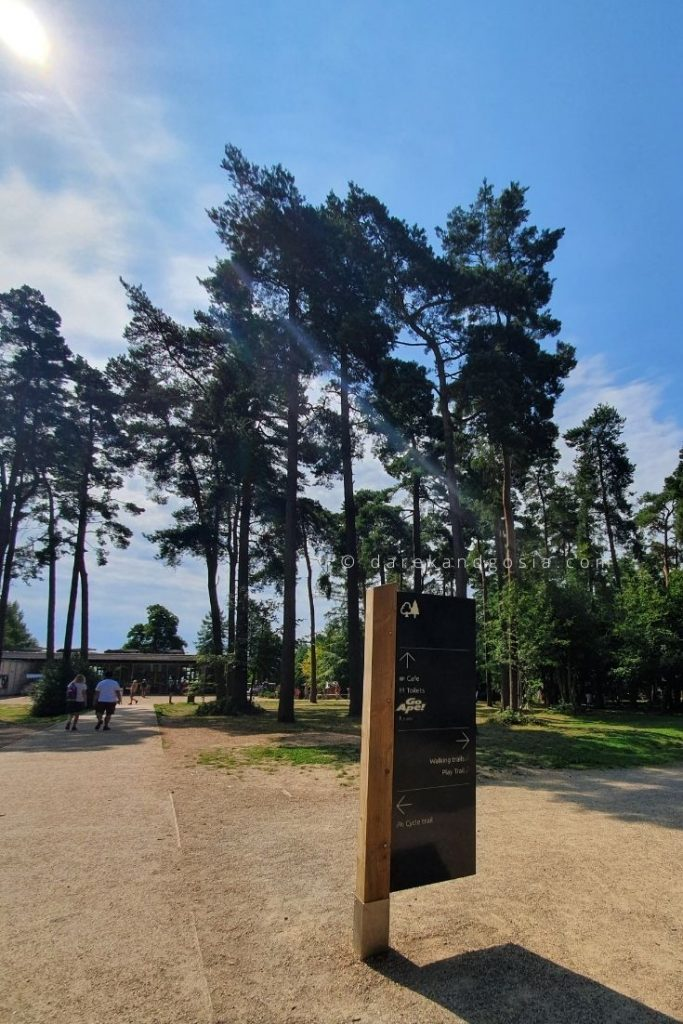 Wendover Woods opening times