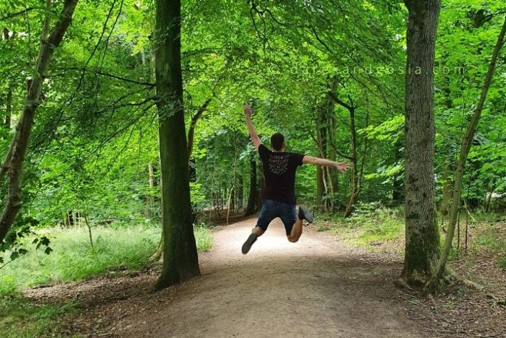 Wendover Woods & things to see in Wendover