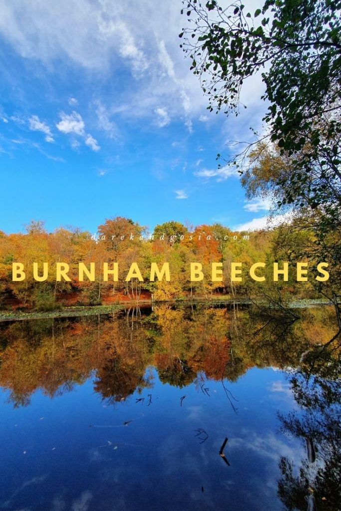 Is it worth visiting Burnham Beeches
