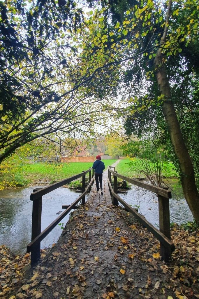 Best things to do in Shere Surrey - River Tillingbourne