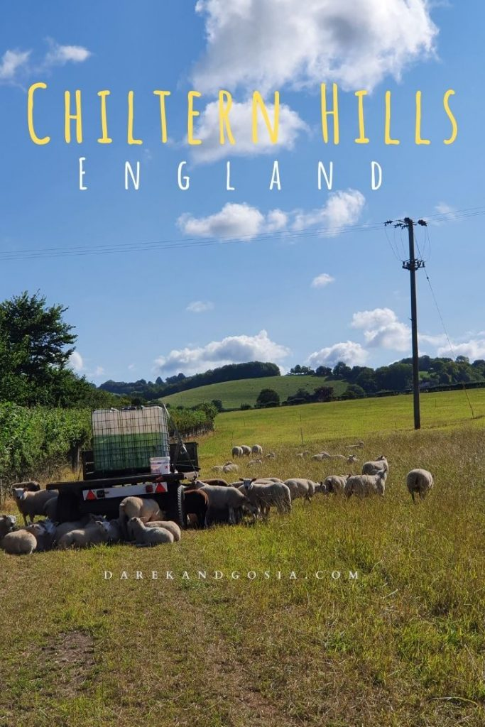 Best places to see in the Chilterns